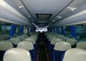 bus novi3